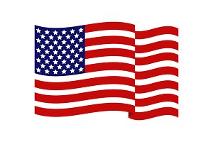 United States flag in vector