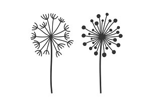 Dandelion Fluffy Flowers Set