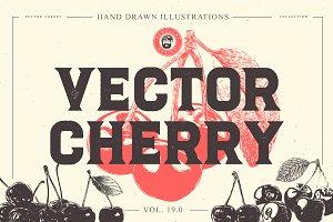 VECTOR CHERRY HAND DRAWN BUNDLE v18