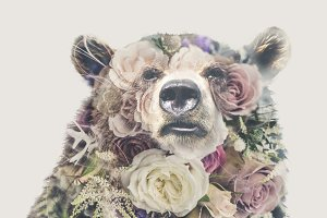 Double Exposure 'Bear and Roses'