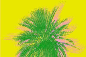 Poster with palm tree