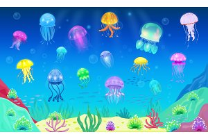 Jellyfish vector ocean jelly-fish or