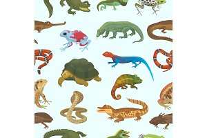 Vector reptile nature lizard animal