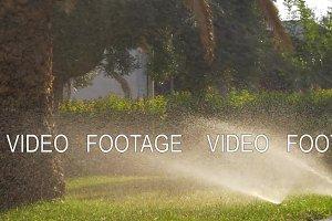 Automatic sprinklers watering green