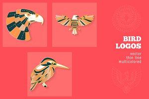 3 Bird Logos