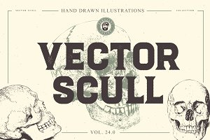 VECTOR SCULL HAND DRAWN BUNDLE 24