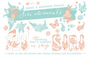 Siri Floral Elements Font