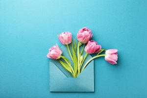 Pink tulips in envelope.