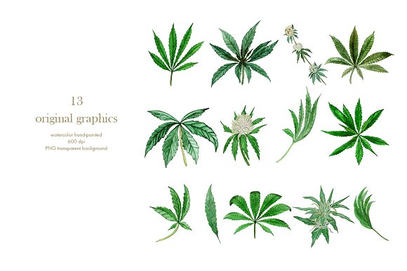 weed leaf template.html
