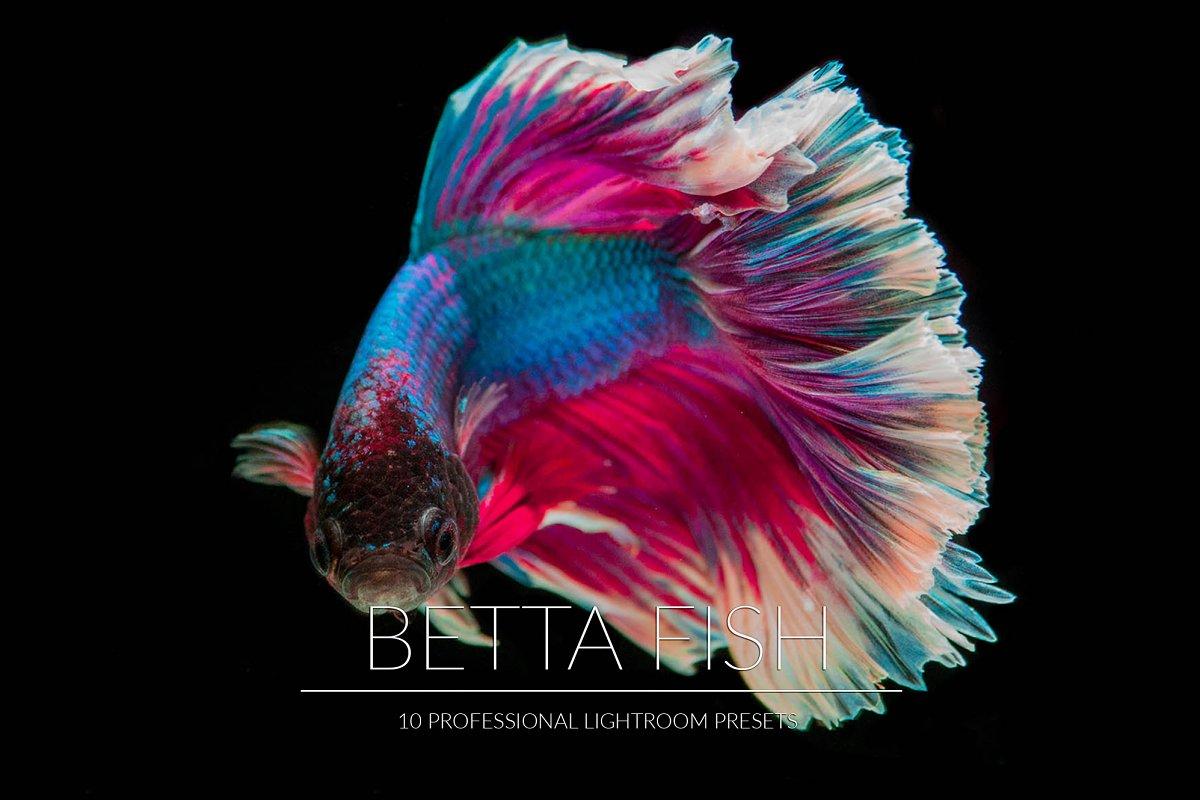 Betta Fish Lr Presets