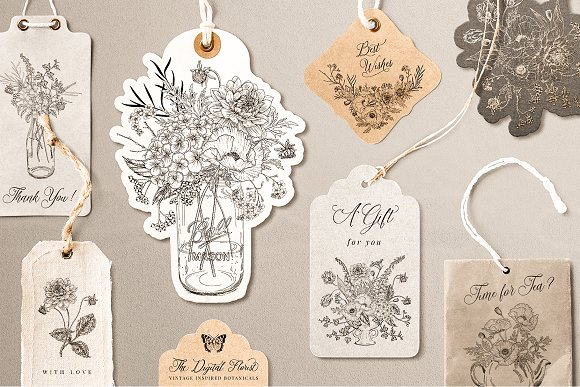 Vintage Botanical Illustrations in Illustrations - product preview 1