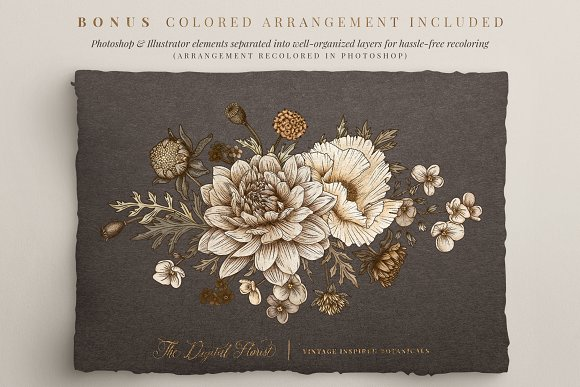 Vintage Botanical Illustrations in Illustrations - product preview 10