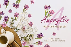Amaryllis design set Watercolor png