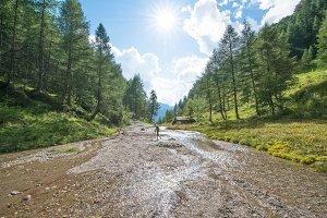 Alpine meadows, high mountain roads