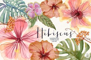 Watercolor hibiscus flower monstera