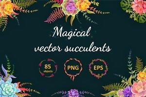 Magical Succulents