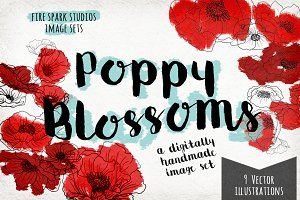 VECTOR Poppy Blossoms Illustrations