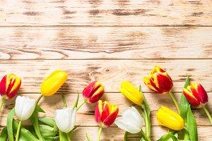 Spring flower background or greeting