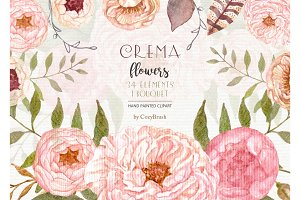 Floral Elements Watercolor Clipart