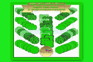 WILD About Green Label Frame Clipart