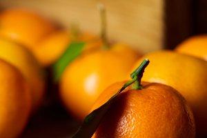 selective focus of orange clementine