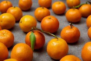selective focus of organic orange ta