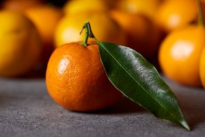 selective focus of sweet orange clem