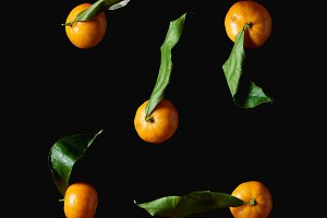 organic tangerines with green leaves