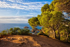 Mediterranean Sea Coast In Spain