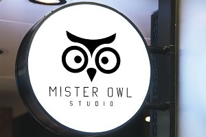 Mister Owl Logo Design and Patterns