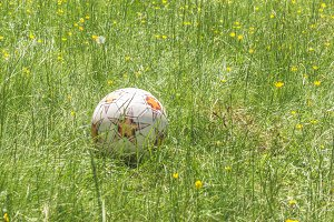 Ball in the mountain meadow.