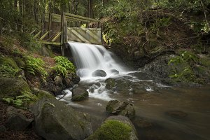 Water spillway in woods