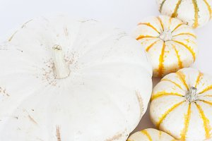Gold & White Autumn Stock Photo 010