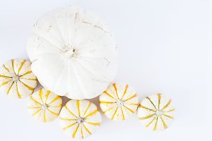 Gold & White Autumn Stock Photo 009
