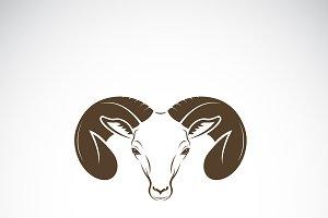 Vector of ram head or mountain sheep