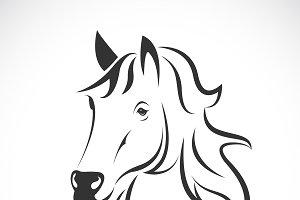 Vector of horse head design. Animal.