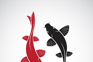 Vector of carp koi fish. Pet Animal.