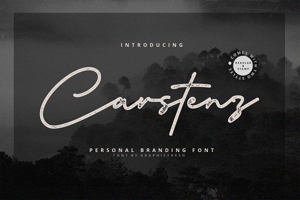 Best Carstenz Vintage Type Vector