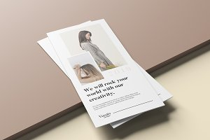 Profile trifold brochure