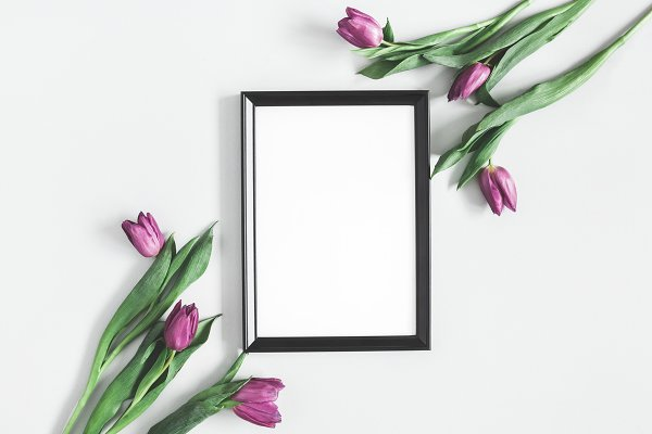 Tulip flowers, photo frame