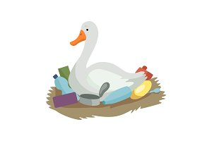 Swan sitting in the nest of plastic