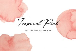 Tropical Pink: Watercolour Clip Art