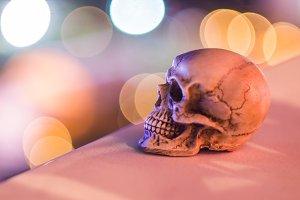 Skull with light bokeh background