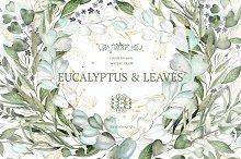 EUCALYPTUS & LEAVES Watercolor