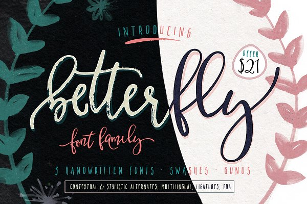 BetterFly - 3 modern fonts & swashe…