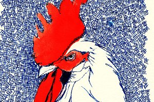 Rooster in Pen and Wash