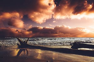 Seashore in the sunset after storm.