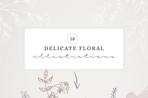 Delicate Florals & Borders