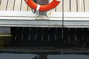 pier marina  with  ring buoy