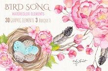 Bird Song Collection